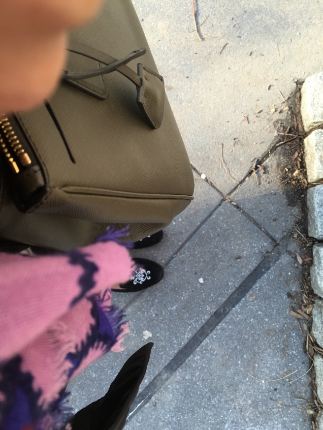 The colors of my morning walk in NYC: pink, royal purple, army green, soft black + concrete gray.